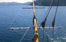 優雅な船旅